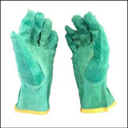 "2.5"" Green Parrot Driver Glove Sasol Glove"