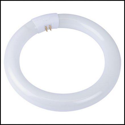 Osr F/Tube Circ 22W C/White Bx Per12